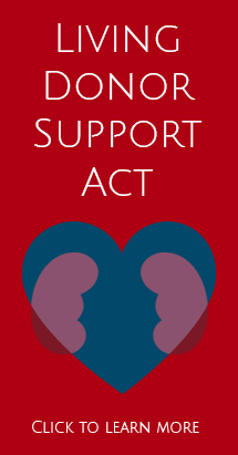 Living Donor Support Act
